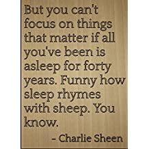 """But you can't focus on things that..."" quote by Charlie Sheen, laser engraved on wooden plaque - Size: 8""x10"""