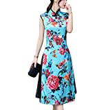 HÖTER Women's Qipao High Split Slim Dress Printed Traditional Vintage Chinese Silk Cheongsam