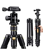 """Camera Tripod, K&F Concept 62"""" Professional Aluminum Tripod TM2324 with Ball Head Quick Release Plate Compatible with Canon Nikon Sony Pentax Leica Fuji Lumix Olympus DSLR Camera Super Light-weight Golden"""