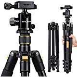 K&F Concept 62'' DSLR Tripod  Lightweight and Compact Aluminum Camera Tripod with 360 Panorama Ball Head Quick Release Plate for Travel and Work (TM2324 Black)
