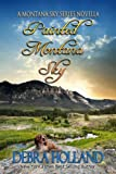 Front cover for the book Painted Montana Sky by Debra Holland