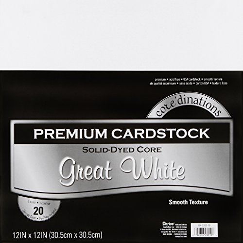 - Darice GX-2200-18 20-Piece Card Stock Paper, 12 by 12-Inch, White