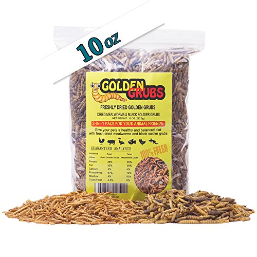 Mealworm Life Cycle (Golden Grubs 5oz Dried Black Soldier Fly Larvae 5oz Dried Mealworms BSF Balanced Diet Combo (10oz))