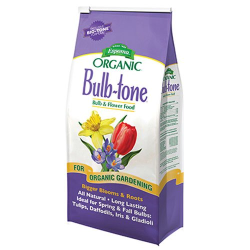 Tulip 5 Flower Bulbs (Espoma BT18 Bulb Tone, 18-Pound)