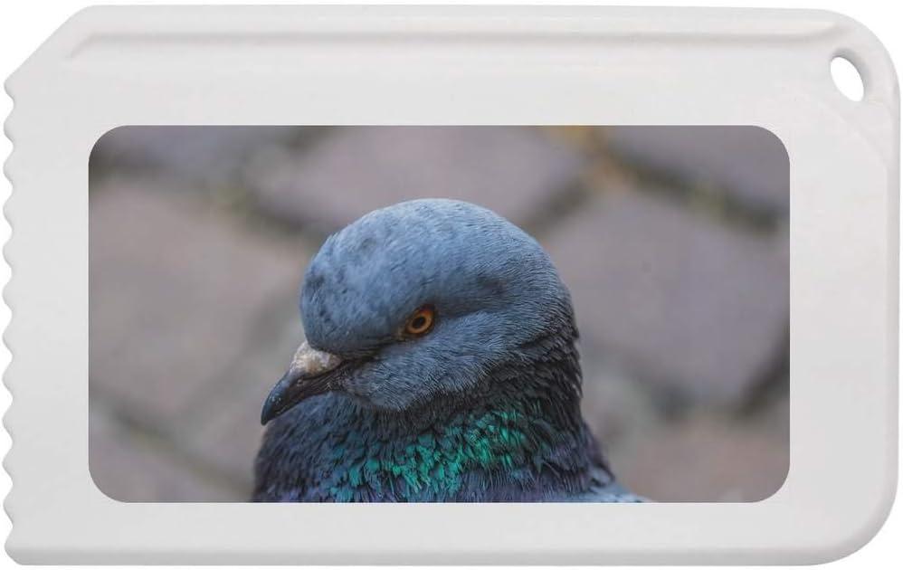IC00004809 Stamp Press Pigeon Head Plastic Ice Scraper