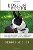 Boston Terrier, Debbie Miller, 1494282674