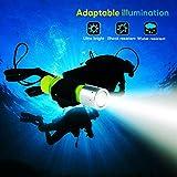 BlueFire Professional 1100 Lumen Diving Flashlight