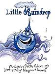 Little Raindrop, Debby Schoeningh, 097463607X