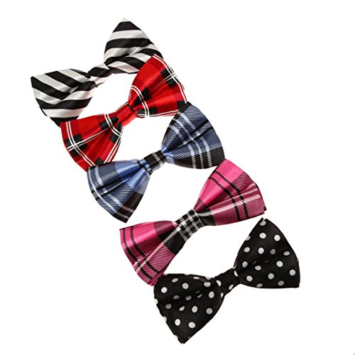 Multi Color Bow Tie (DBF0111 Mens Jewelry Multi-color Bow Ties 5 Package Gift Set Dan Smith)