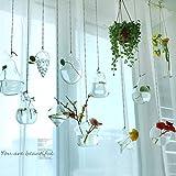 Ivolador Terrarium Container Flower Planter Hanging