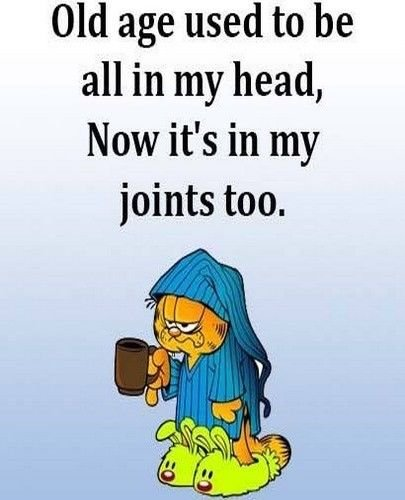 Novedad Garfield Vejez En Mi articulaciones Funny cita fotos imán ...