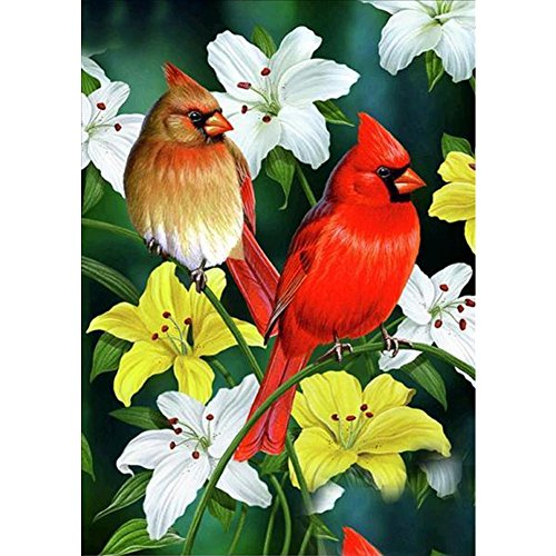 Whitelotous Bird Series Partial Drill 5D Diamond Painting Cross Stitch Embroidery Mosaic Wall Picture Gift Rhinestone Needlework 16 x 12 inch (5)