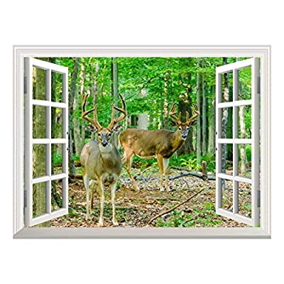Removable Wall Sticker/Wall Mural - Whitetail Deer/Buck in Velvet Standing in The Woods | Creative Window View Home Decor/Wall Decor - 36