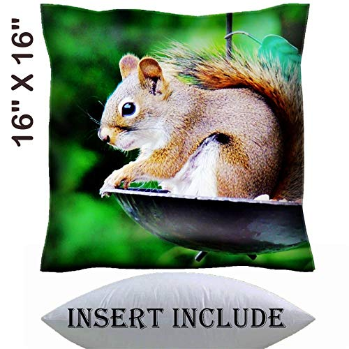 MSD 16x16 Throw Pillow Cover with Insert - Satin Polyester Pillow Case Decorative Euro Sham Cushion for Couch Bedroom Handmade Image 20485480 Chipmunk on Bird Feeder
