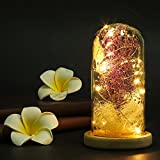 Molie Artificial Babysbreath Flower in Glass Dome Cover with LED Light Preserved Flower Glass Dome Micro Landscape DIY Handmade Romantic Enchanted Love Forever Gift for Wedding, Valentine's Day