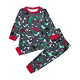 Little Boy Dinosaur Pajamas Sets,Jchen(TM) Infant Baby Kids Little Boys Dinosaur Print Long Sleeve Tops Pants Homewear Sleepwear Outfits for 1-5 Y (Age: 18-24 Months)