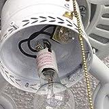 Ceiling Fan Light Switch Zing Ear Pull Chain Switch