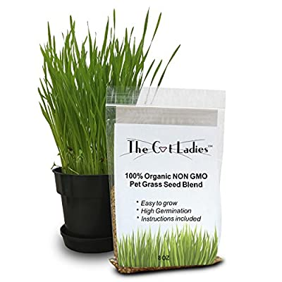 100% Organic Cat Grass Seed (NON GMO) from The Cat Ladies