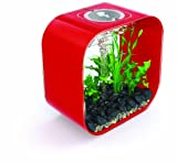 biOrb Life 30 for Aquarium, 8-Gallons, Chill Red