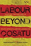 Labour Beyond Cosatu: Mapping The Rupture In South Africa's Labour Landscape