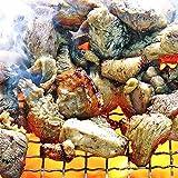 宮崎名物焼き鳥 鶏の炭火焼100g 手仕込み+冷凍でなければ出来なかった焼き立てのお店の味 (100g×6パック)