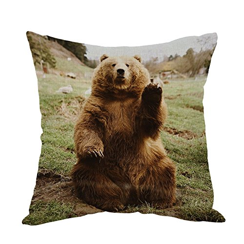 Moslion Bear Pillow,Home Decor Throw Pillow Cover Hi Bear Sit on the lawn Cotton Linen Cushion for Couch/Sofa/Bedroom/Livingroom/Kitchen/Car 18 x 18 inch Square Pillow case ()