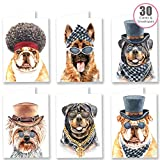 30 Super Funny Dogs in Disguise Thank You, Birthday Cards Multipack with Envelopes - by Ruby Ashley
