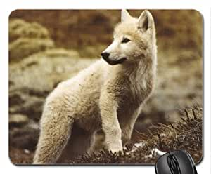 Cute little White Wolf Mouse Pad, Mousepad