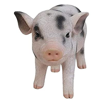 Hi-Line Gift Ltd Standing Baby Pig with black Spots: Home & Kitchen
