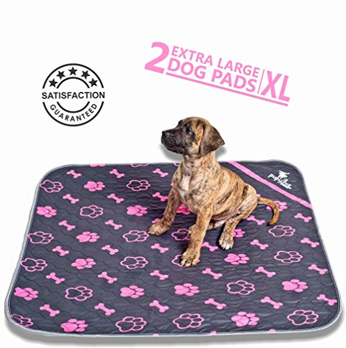 Pupwhiz Dog and Puppy Pee Pads | Reusable and Washable XL Urine Incontinence Mats 30x36 | Perfect for Potty Training and Whelping in Kennel Crate Or Playpen | Ideal As Bowl Placemat for Pet Feeding