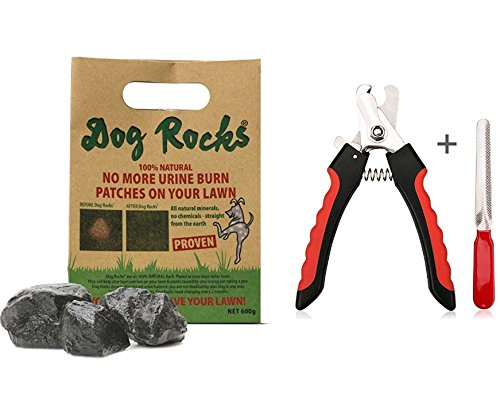 Dog RocksDog Rocks Lawn Burn Prevention 600g 6 month supply,1Case Plus Dog Nail Clippers and Trimmer - Razor Sharp Blades, Safety Guard to Avoid Overcutting, Free Nail File - Start Professional & Safe by Paradise Dog Rocks