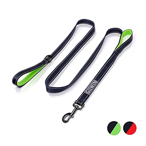 Heavy Duty Dog Leash - 2 Handles by Padded Traffic Handle For Extra Control, 6foot Long - Perfect For Medium To Large Dogs (6ft,Black Green)