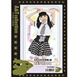 The set to AKIBA girl Corps (japan import)