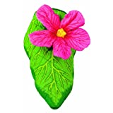 Boston Warehouse Hibiscus 0.2 pounds