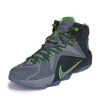 db760f67525d5 NIKE Lebron XII Mens Basketball Shoes 684593-001 Wolf Grey Reflect ...