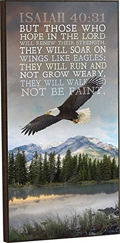 (CELYCASY Soar on Wings Like Eagles 16 x 8 Wood Wall Art Sign Plaque)