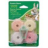 Penn Plax Pumice Chews for Pets, Multicolor, My Pet Supplies