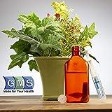 GMS Press in Bottle Adapter Plug for Oral