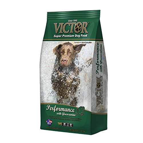 Victor Dog Food GMO-Free Performance Beef Meal for Dogs with Glucosamine, 5-Pound