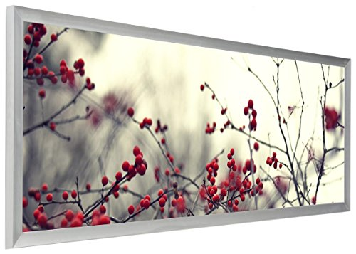 Displays2go PNFA40135S Pano Photo Frame for Panoramic Pictures, 40 x 13.5""