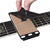 Spartan Music Electric / Bass Guitar Fretboard & String Cleaner (Black)