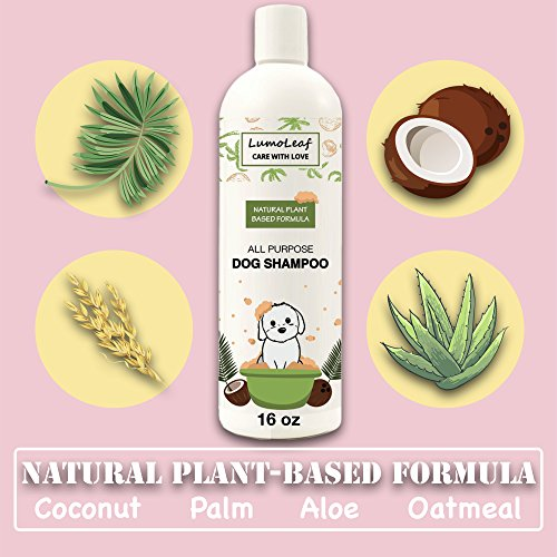 Natural Dog Shampoo w/ Coconut Palm Oatmeal Aloe, Promotes Healthy Hair, Helps Dry Itchy Skin, Pets Puppies Cats 5 in 1 Cleanser Conditioner Moisturizer Deodorizer Detangler, Made in the USA, 16 oz.