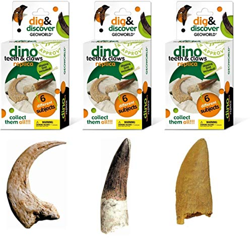 Replica Bundle - Geoworld Dino Teeth and Claw Replica Dig and Discover Bundle (Set 1)