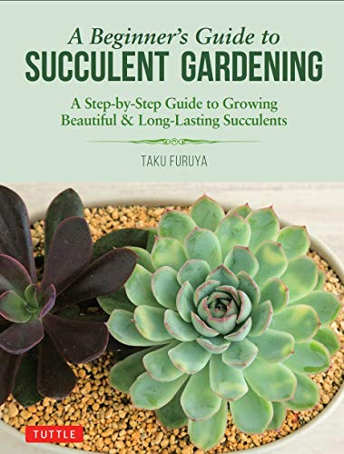 A Beginner's Guide to Succulent Gardening: A Step-by-Step Guide to Growing Beautiful & Long-Lasting Succulents (For Succulent Care Plants)