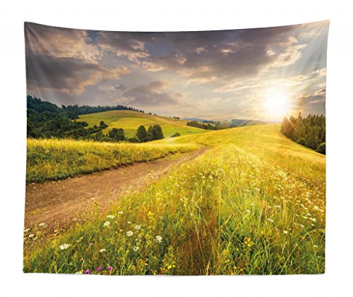 Lunarable Nature Tapestry King Size, Sunset on The Meadow Rural Country Flower Field and Trees Idyllic Scene, Wall Hanging Bedspread Bed Cover Wall Decor, 104 W X 88 L Inches, Lime Green Pale Brown
