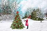Gifts Delight LAMINATED 36x24 inches Poster: Snow Snowfall White Christmas Winter Cold Xmas Snowflake Season Holiday Flake Decoration December Falling