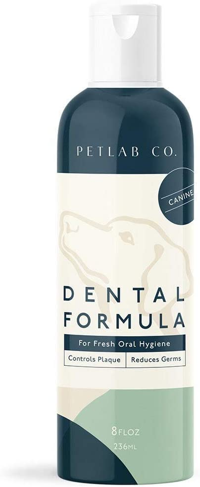 Petlab Co. Dental Wash | Dog Mouthwash & Teeth Cleaner | Dental Water Additive, Targets Plaque & Tartar | Maintains Clean Teeth & Supports Gum Health & Fresh Breath