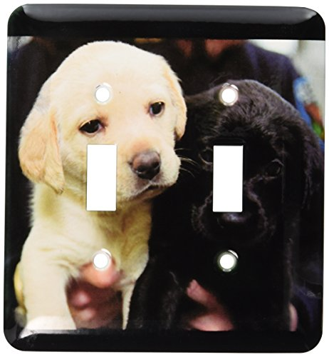 3dRose lsp_1219_2 Black and Yellow Lab Puppies Double Toggle Switch