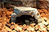 World 9.99 Mall Reptile Rock Hide Cave Reptile Rock Hide Habitat Decoration|Natural,Non-Toxic, Made of Resin | Hideout for Small Lizards, Turtles, Reptiles, Amphibians,Fish