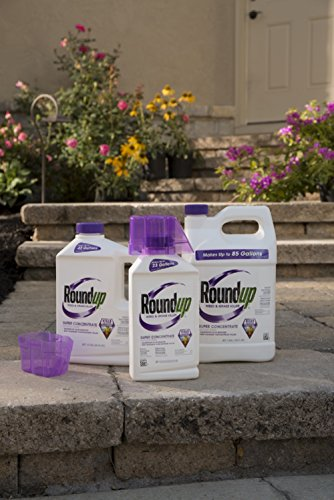Buy commercial weed and grass killer